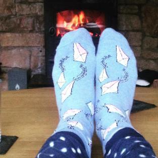 socks cosy